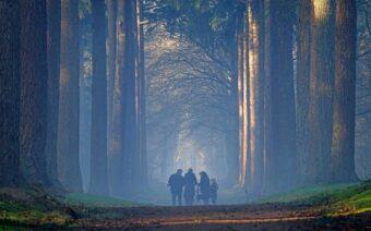 Woordvoering is niet makkelijk, Het Nationale Park De Hoge Veluwe gleed uit